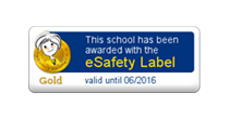 e-safety logo